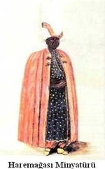 Harem Agasi